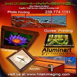 Hitek Imaging